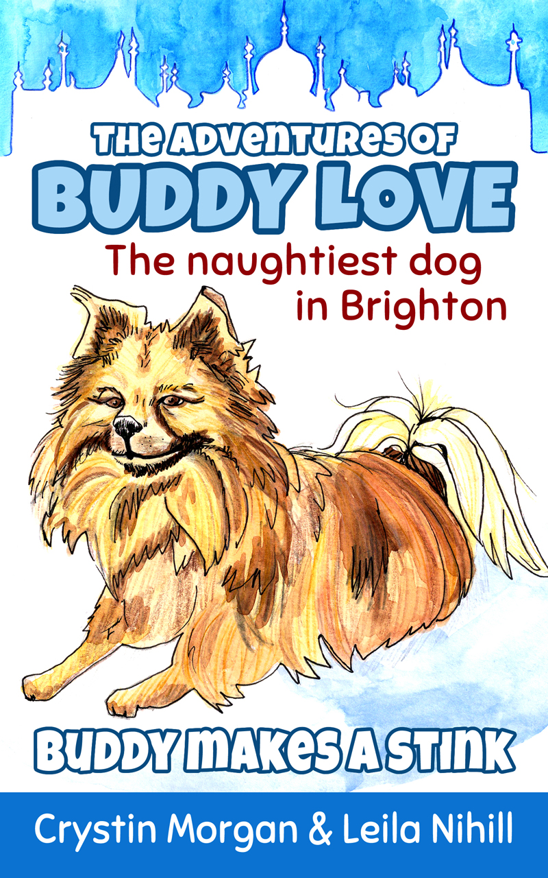The Adventures Of Buddy Love by Crystin Morgan book cover - designed by Hook Web & Print